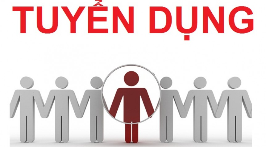 Tính hợp lý và tin cậy và yêu cầu trong quá trình tuyển dụng